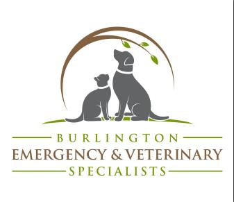 BEVS | Burlington Emergency & Veterinary Specialists
