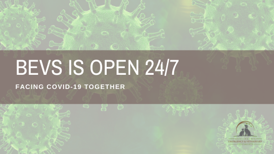 We're Open 24/7– Facing COVID-19 Together