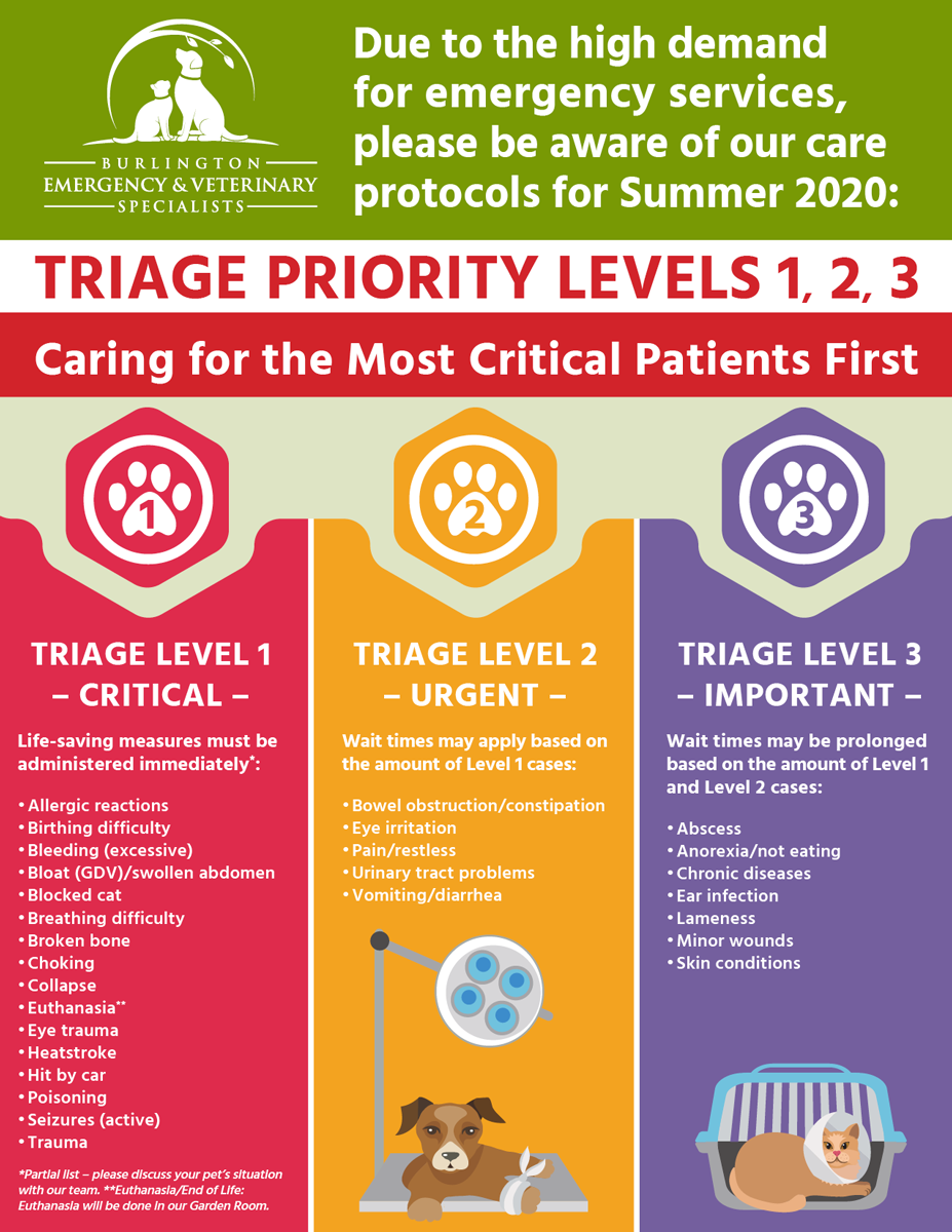 BEVS New TRIAGE PRIORITY LEVELS 1, 2, 3 Caring for the Most Critical Patients First